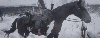 Bilderstrecken: Alle Pferde mit Fundorten und Werten