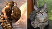 Mod macht Drachengeborenen zum Katzenbesitzer