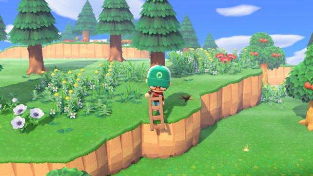 Mit der Leiter könnt ihr höhere Ebenen in Animal Crossing: New Horizons erreichen.