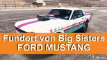 Big Sisters Ford Mustang - Fundort des stillgelegten Autos