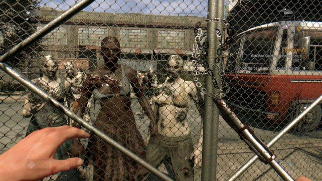 Zum Glück steht der Zaun zwischen Kyle und den Zombies.