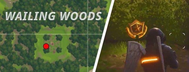 Hier findet ihr den Schatz in Wailing Woods.