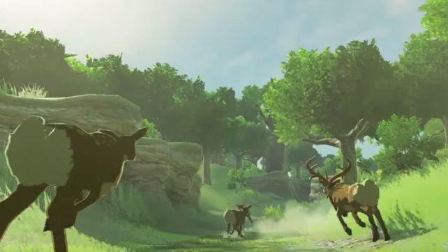 Im neuen Zelda könnt ihr auf die Jagd gehen. Ein gutes Steak gibt Lebensenergie.
