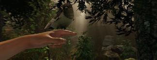 The Forest erscheint für PS4