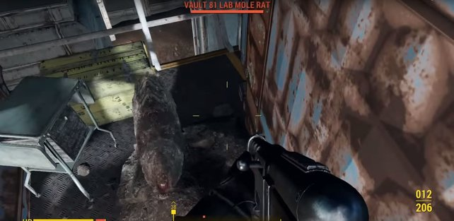 Bei Fallout 4 übertragen spezielle Maulwurfsratten eine Krankheit, die nicht einfach zu heilen ist.