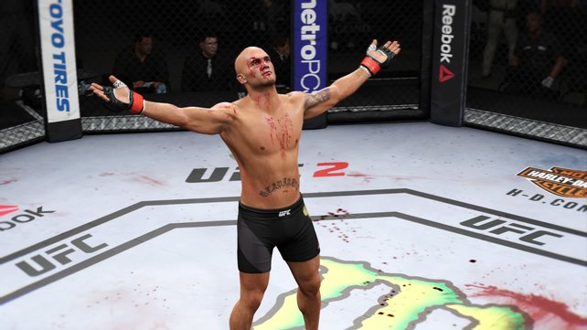 Mithilfe unserer Tipps werden die Kämpfe in UFC 2 für euch zwar nicht weniger blutig, dafür aber umso erfolgreicher - versprochen!