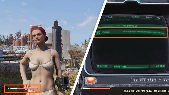 Bei Fallout 76 sind Mutationen nicht unbedingt sichtbar, wie das Bild beweist.