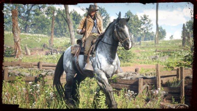 Im Wilden Westen gibt es verschiedene Editionen. Für welche Version von Red Dead Redemption entscheidet ihr euch?