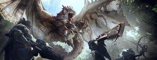 Panorama: Hier habt ihr sie alle: Die wichtigsten Tipps für Monster Hunter World