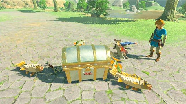 Amiibo können euch die Suche nach Nahrungsmitteln erleichtern.