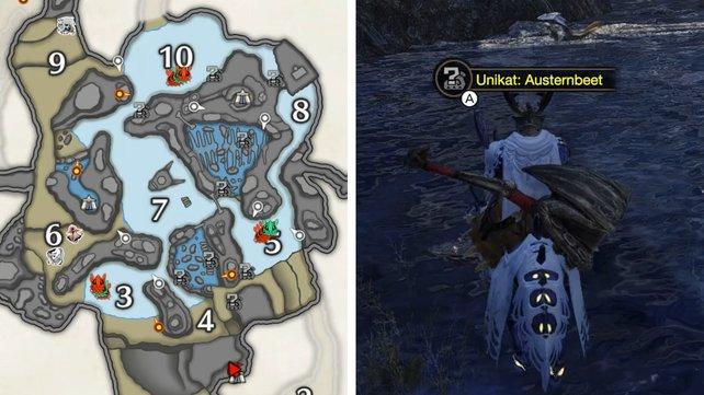 Die grauen Symbole auf der Karte zeigen euch, wo ihr nach den Bootsmuscheln suchen müsst.