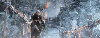 Tests: Dark Souls 3 - Ashes of Ariandel: Schneewehen und Wermutstropfen