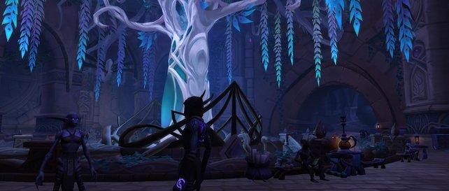 Spielt die Kampagne in Suramar, um Ruf bei den Nachtsüchtigen zu erhalten.