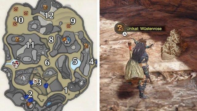 Die orangen Symbole auf der Karte zeigen euch, wo ihr nach den Felsrosen suchen müsst.