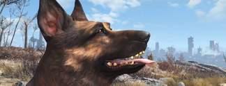 Wer ist eigentlich? #127: Dogmeat