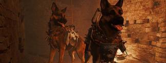 Fallout 4: Per Modifikation als Dogmeat spielen