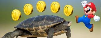 Kolumnen: Auf dem Rücken der Schildkröten zur Spielekonsole