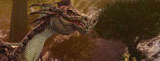 Specials: Drei gute Gründe für Dragon's Prophet