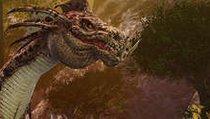 <span>Special</span> Drei gute Gründe für Dragon's Prophet