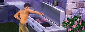 Tests: Die Sims 3 Design-Garten-Accessoires: Luftnummer