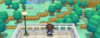 Vorschauen: Pokémon Schwarze & Weiße Edition 2: Abschiedsvorstellung