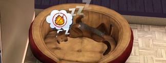 Tests: Sims 3 - Einfach Tierisch: Die bislang beste Erweiterung