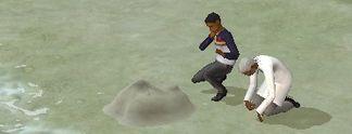 Test PC Die Sims 2 - Gute Reise