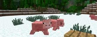 Specials: Minecraft: 10 großartige Abenteuer - kostenlos!