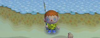 Test Wii Animal Crossing: Macht die Stadt unsicher!