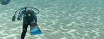 Endless Ocean 2: von allem etwas Meer