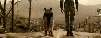 Wahr oder falsch? #65: Kann Dogmeat in Fallout 3 Laserstrahlen verschießen?