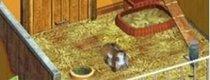 Mein eigenes Tierheim