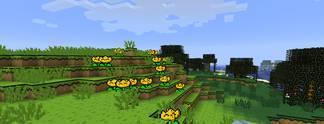Specials: Minecraft: Die 10 besten Grafikmods – für lau!