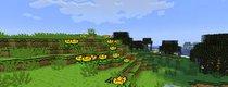 Minecraft: Die 10 besten Grafikmods – für lau!