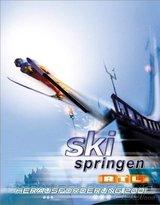 Skispringen 2001