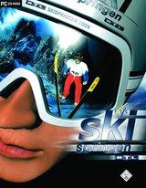 Skispringen 2004