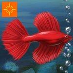Fish Tycoon Lite
