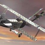 Combat Skies