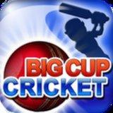 Big Cup Cricket