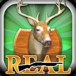 Real Deer Hunting