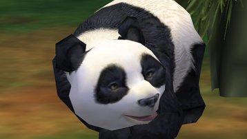 <span></span> ein jungtier des Großen Pandas