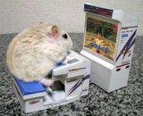 Gamefreund