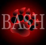 Progamer-Bash