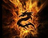DragonFire3624