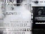 Trailer zur Veröffentlichung
