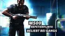Die Schrotflinten in Max Payne
